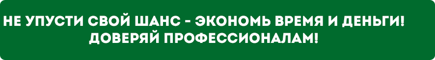 zelenaya_poloska